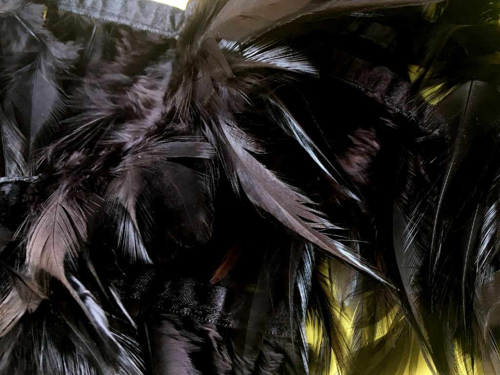 So. Much. Feather.