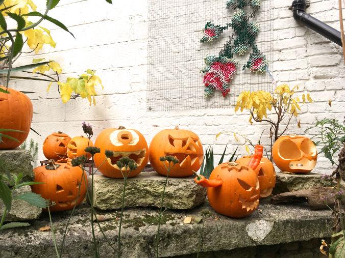 The pumpkins have landed!
